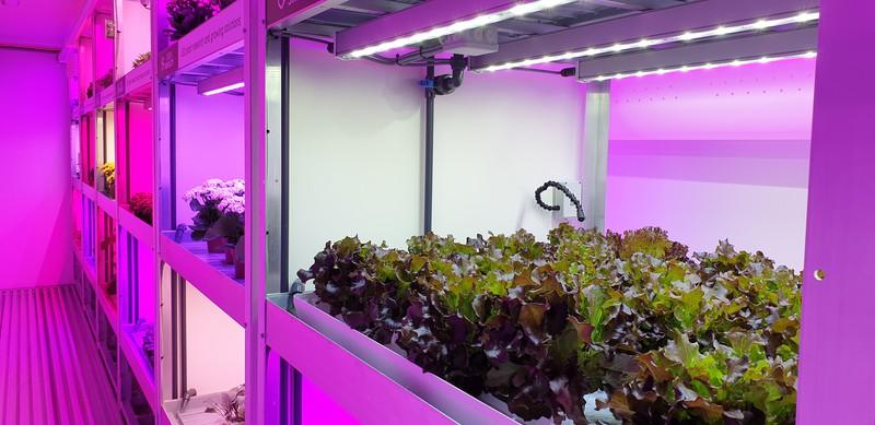 Toepassing IoT in tuinbouw
